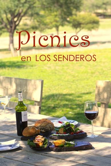 picnics cover web